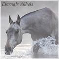 eternals akhals