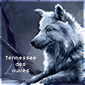 ♛ tennessee des ℒouves ♛