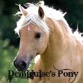 demiguise's pony