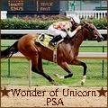 wonder of unicorn psa