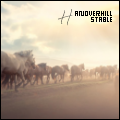 hanoverhill stable ೡ