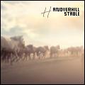 hanoverhill ઽtable ೡ
