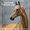 l'empire temudjin