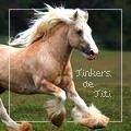 tinkers de titi ~