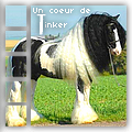 un coeur de tinker