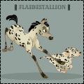 ꆜ flaebestallion ꆜ