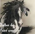 tâches de paint'ures