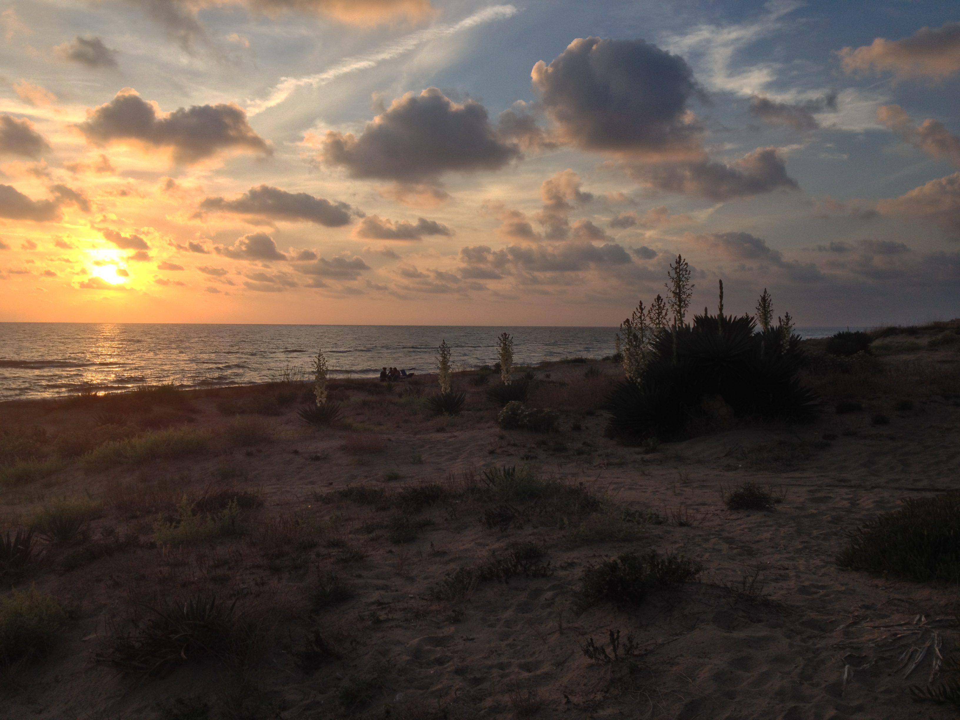 Enea sbarcò su una spiaggia di Torvaianica vicino a Lavinium, la città madre dei latini
