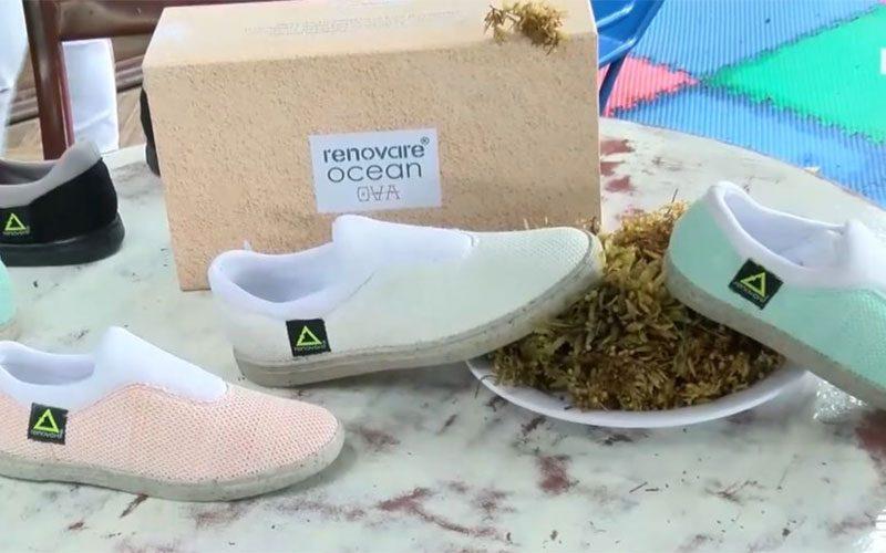 Scarpe fatte di alghe e plastica raccolta in mare, così in Messico cercano di salvare l'oceano
