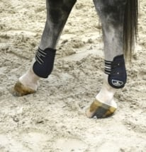 Fetlock Boots Closed by Lami-Cell