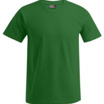 E3000 Heren T Shirt Promodoro Kelly Green