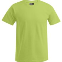 E3000 Heren T Shirt Promodoro Wild Lime
