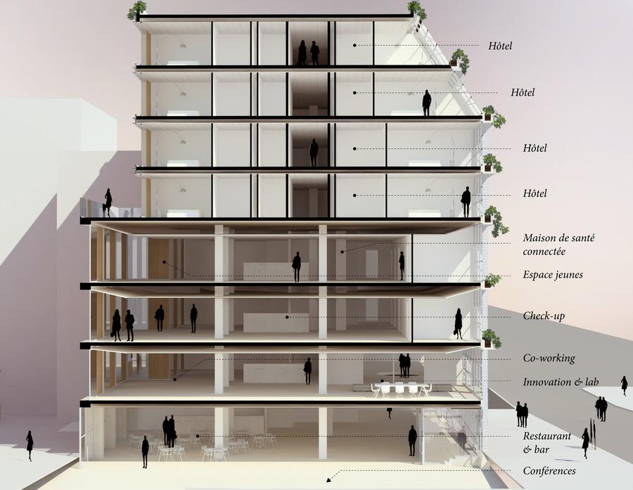 Plan de coupe de la Villa M