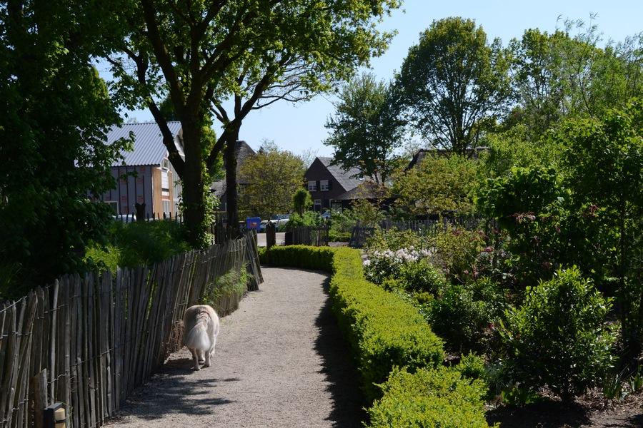 À l'entrée du parc national Dunes de Loon et Drunen, les deux hectares de la ferme de Griesbergen offrent un cadre apaisant au contact des animaux.