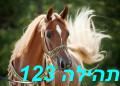 תהילה 123