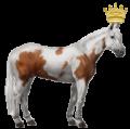 קבוצת סוס פיינט