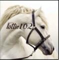 lottie102