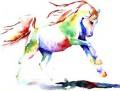 rainbow racers