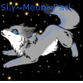 sky~moon~pack