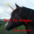 ⊰ here be dragons ⊱