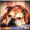 berda27