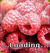 ...loading...
