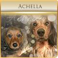achella