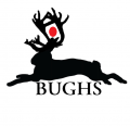 bughs