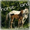 horse - land