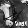 sagar01