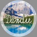 dandie
