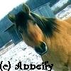 anneify