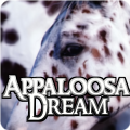 appaloosadream