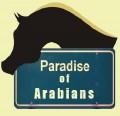 paradise of arabians