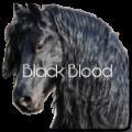 ღ black blood ღ