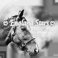 ♡ england stars ♡