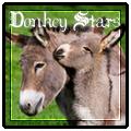 donkey stars
