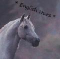 * english stars *