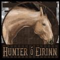 hunter ó eirinn