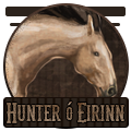 hunter o eirinn