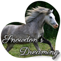 snowdon's dreaming