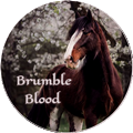 brumble blood