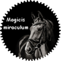 magicis miraculum