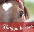 shagya ღ heroes ღ