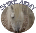 shire army