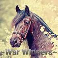 ~war winners~