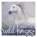 *heart of wild horses*