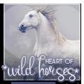 * heart of wild horses *