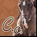 caballos orientales