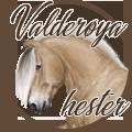 valderøya hester
